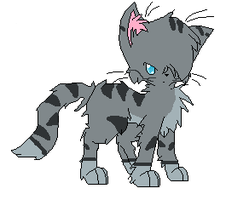 Jayfeather by Ask-Mosspath