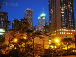 Chicago 04 by LaDell