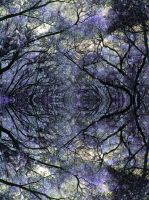 Tree Vortex by thereisnolove