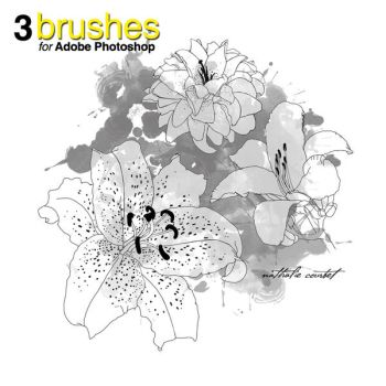 Flower Brushes for Adobe Photoshop by nataliecourbete