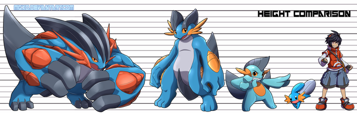 Mudkip Evolution and Height Chart by Mgx0