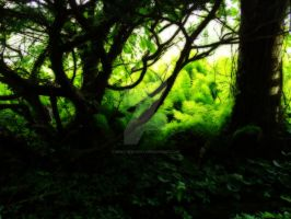 The Temperate Jungle by MercuryCrest