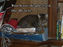LOLcat Oracle by mamaslyth