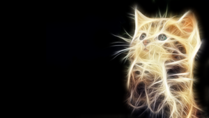 Pussy Cat Fractal by christara