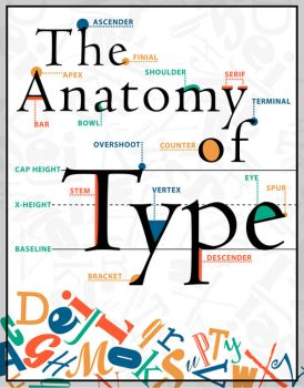 The Anatomy of Type Poster by designstew