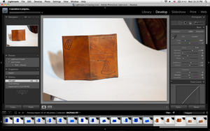 WIP : Leather journals by taeliac