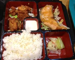 Salmon and Chicken Karaage Bento by nosugarjustanger