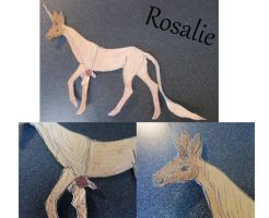 Rosalie as wall decoration by byrch