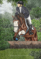 Cross Country in Rain by Minnie1994