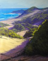 Beach Dunes Norah Head  , NSW by artsaus