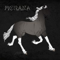 Morana Reference by Befera