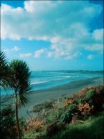 -Raglan Beach- New Zealand by TricksyPixel
