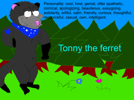 Tonny the Ferret ( The Team ferrets ) Do not Steal by valentinfrench