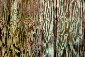 texture stock 388 by redwolf518stock