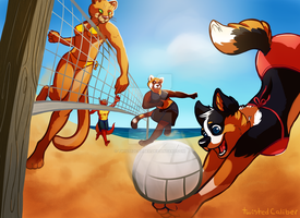 Beach Day by twistedCaliber