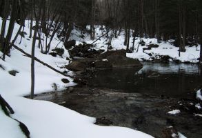 A Cold Creek by hollysfollys