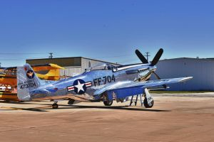 North American Mustang by JSF1