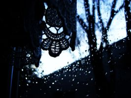 lace and rain by chanmanthechinaman