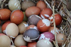 Easter Stock 09 by Malleni-Stock