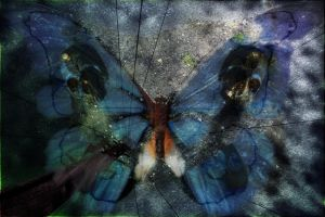 butterfly effect by nepesh