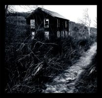 Overgrown with old Memories by Digidrama
