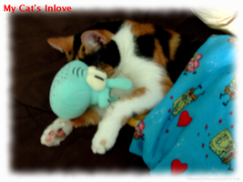 My Cat And Squidward by PixeledGirl777SB
