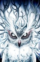 White Owl by Mecino