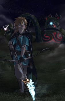 Link and Guardian by Kolshio