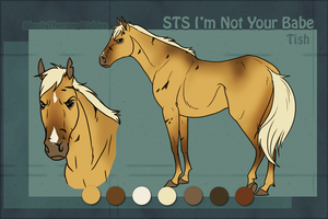 STS Mare- Tish by ShockTherapyStables
