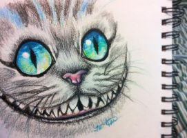 Cheshire Sketch by Faye-Fox