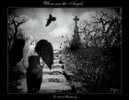 Where are the Angels by Chatterly