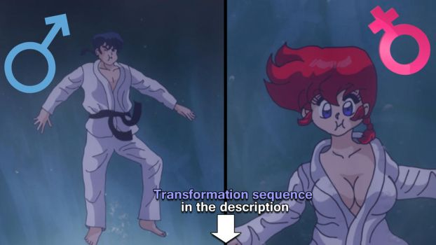 Ranma transformation sequence by Hainfinkle