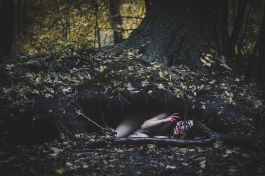death of the dryad by beyondimpression