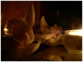 Orchid Light 2 by soulless666