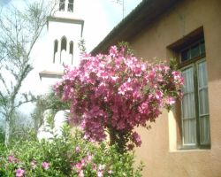 .church and flowers by BiaJustMe
