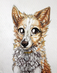 Lia watercolor by LiaBorderCollie