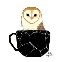 Barn Owl in a Teacup by TwoBlackCats