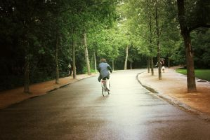 Bicycles and Rain by since91