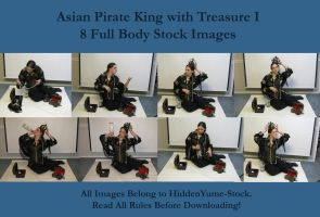 Pirate King and Treasure 1 by HiddenYume-stock