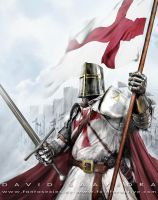 Templar Knight by flipation