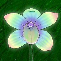 Rainbow Orchid by Amazinadrielle