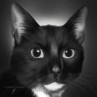 Little Buddy by ThreshTheSky