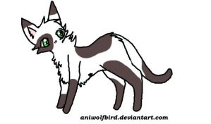 Zombiedoghorse : Cat by maniacalmarie16