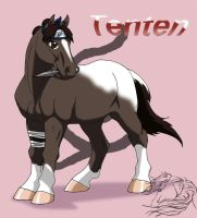 Tenten-pony by WSTopDeck