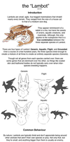 Lambot - Species Info sheet by CrookedLynx