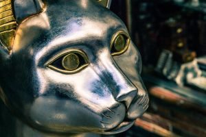 Silver Cat standing Guard by Labrug