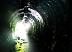 Tunnel Vision by RecycledGenius