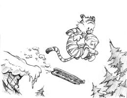 Calvin and Hobbes by Sanaril