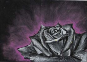 .:Rose:. by Narien