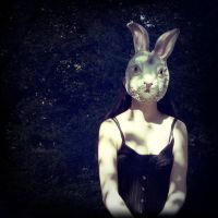 bunny by Syllie